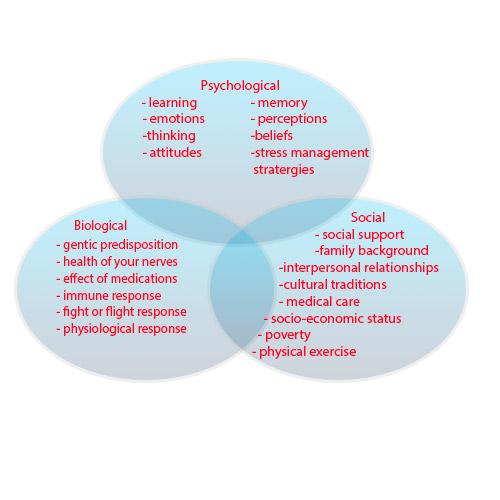 Detailed biopsychosocial model